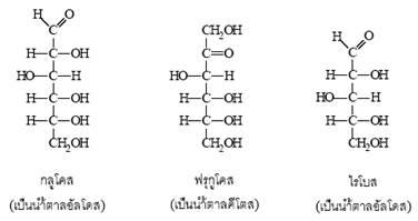 ไดแซ็กคาไรด (disaccharides